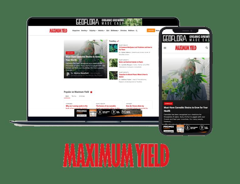Maximum Yield